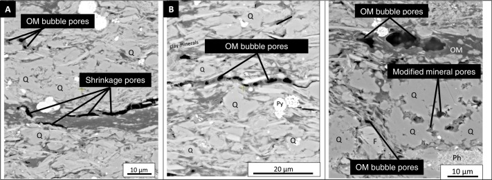 Pore-types and pore-network evolution in Upper Devonian-Lower