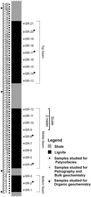 Investigation on the lignite deposits of Surkha mine