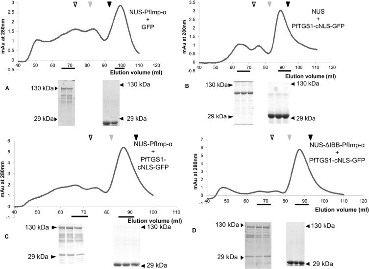 An insertion in the methyltransferase domain of P  falciparum