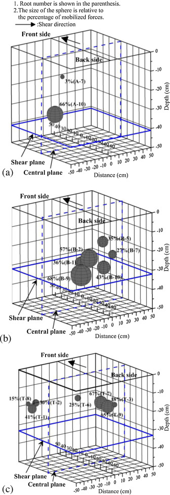 Spatial distribution of plant root forces in root-permeated soils