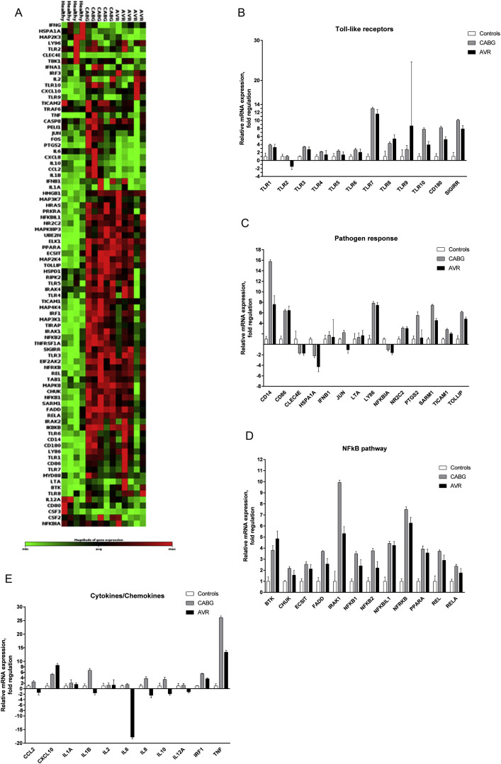 Toll-like receptor-mediated inflammation markers are strongly