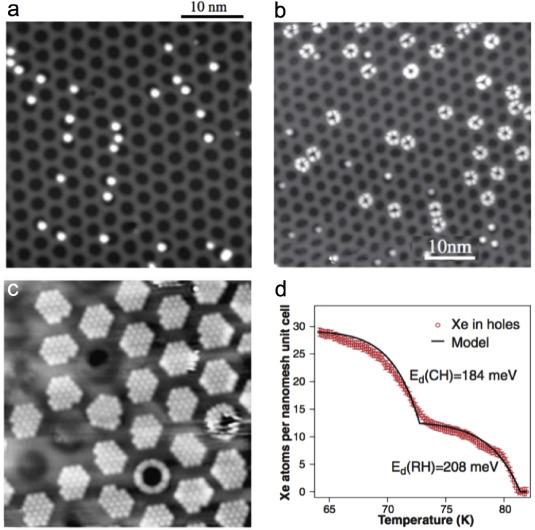 61ce5822d0c Hexagonal boron nitride monolayers on metal supports: Versatile ...