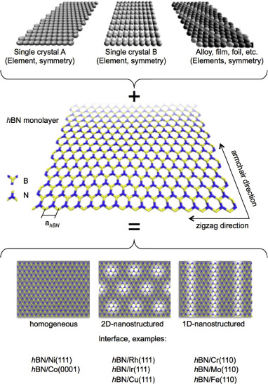 Hexagonal boron nitride monolayers on metal supports