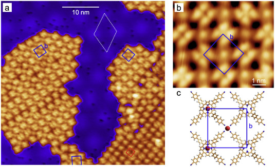 Hexagonal boron nitride monolayers on metal supports