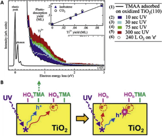 Surface Chemistry and Catalysis of Oxide Model Catalysts from Single