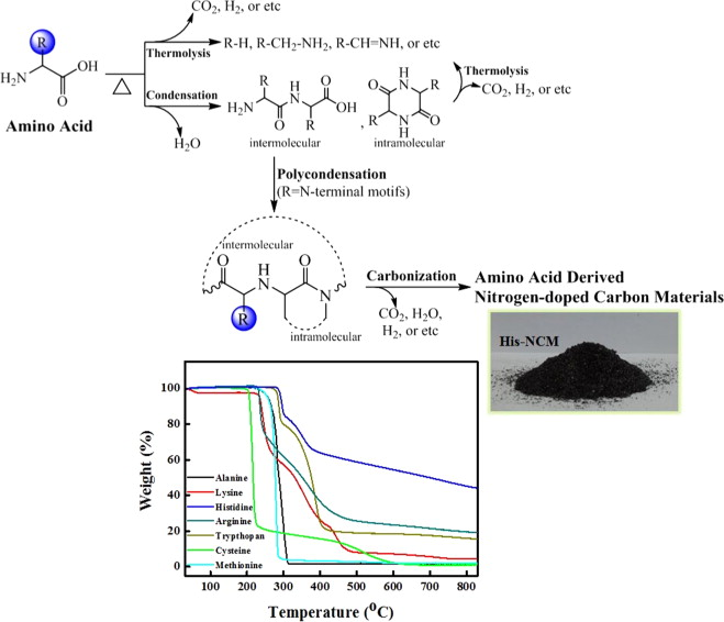 Amino acids derived nitrogen-doped carbon materials for