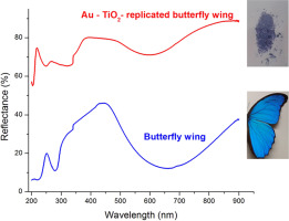 Morpho ierarhic TiO2 with plasmonic gold decoration for highly