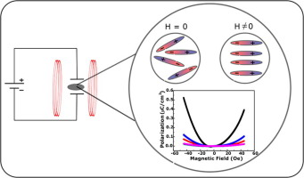 Magnetically driven robust polarization in (1 − x)BiFeO3–xPbTiO3