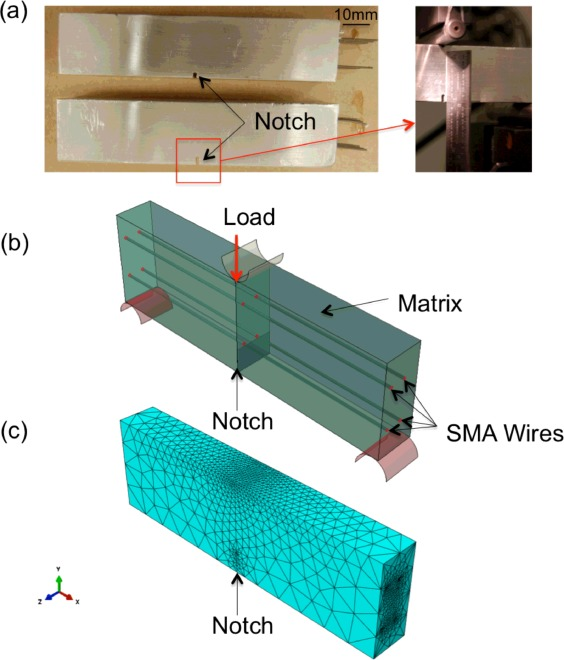 Characterization and modeling of three-dimensional self-healing ...