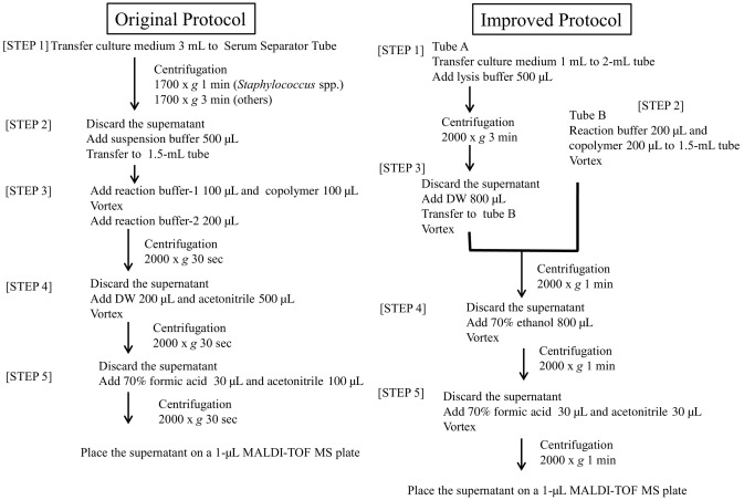 Development of an improved rapid BACpro® protocol and a method for