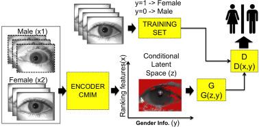 Soft-biometrics encoding conditional GAN for synthesis of NIR