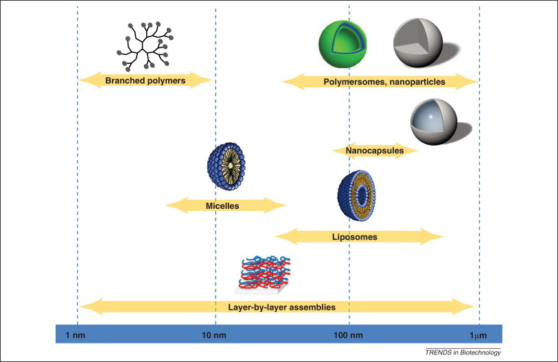 Colloidal capsules: nano- and microcapsules with colloidal particle shells