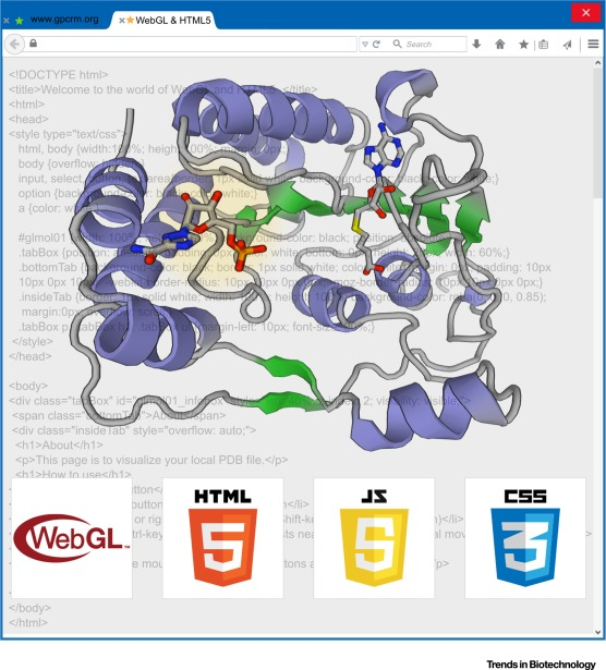 Implementing WebGL and HTML5 in Macromolecular Visualization and