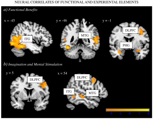 Neural responses to functional and experiential ad appeals