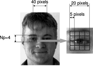 Face recognition using HOG–EBGM - ScienceDirect