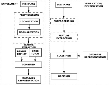 Iris recognition using multiscale morphologic features