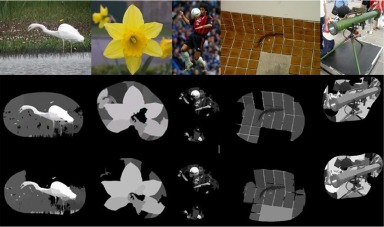 Boosting image classification through semantic attention