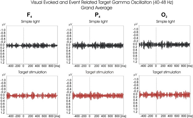 Multiple gamma oscillations in the brain: A new strategy to