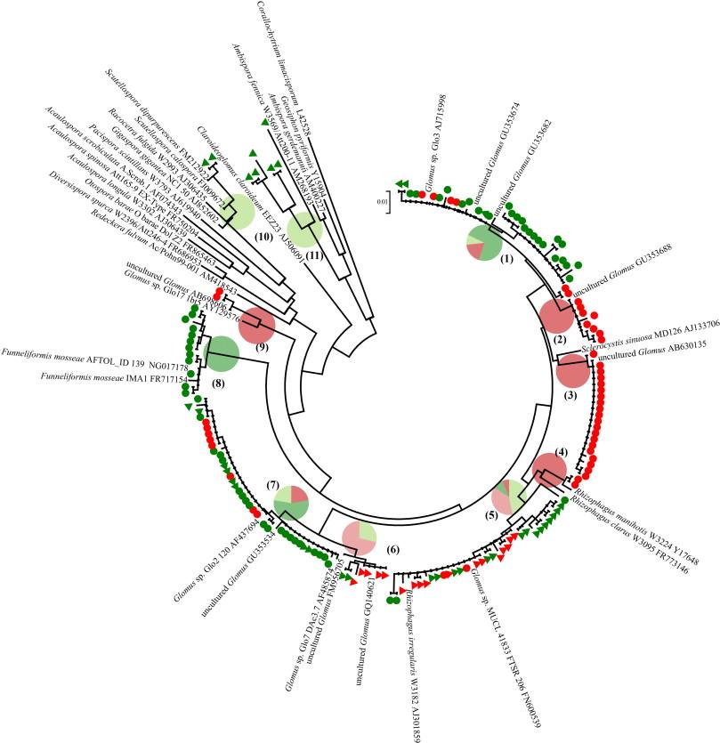 Coleman Ah 16 Series Wiring Diagram
