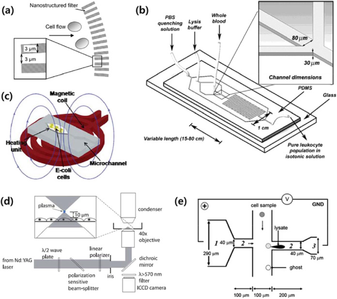 Electrical force-based continuous cell lysis and sample separation on