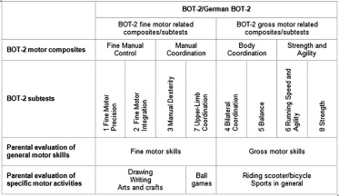 Hypothesised relationships between BOT-2 with parent evaluations.