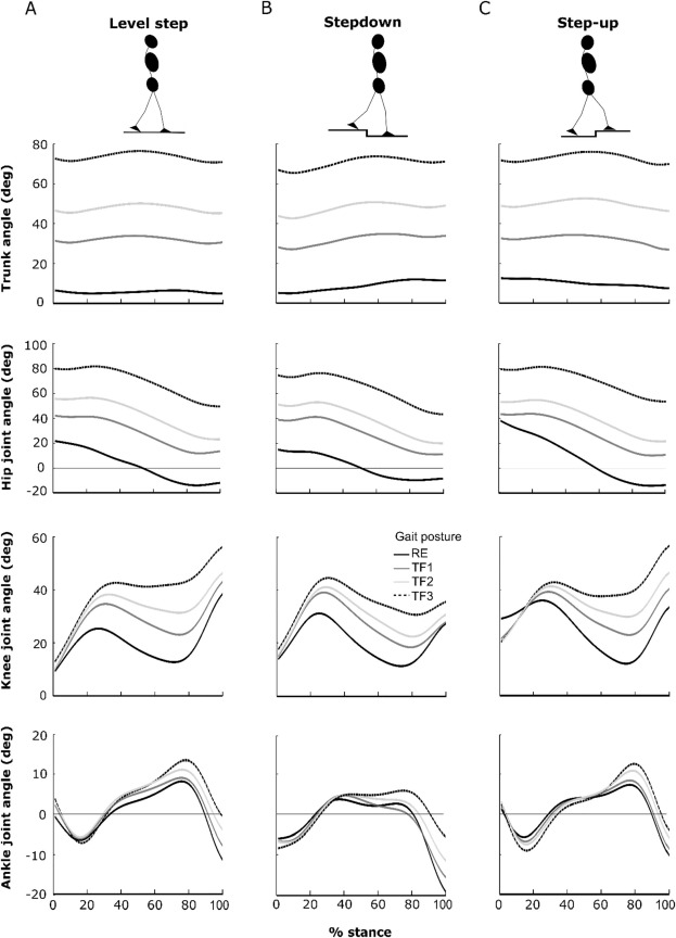 Locomotor stability in able-bodied trunk-flexed gait across