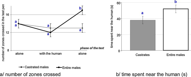 Effects of neonatal castration on social behaviour, human–animal