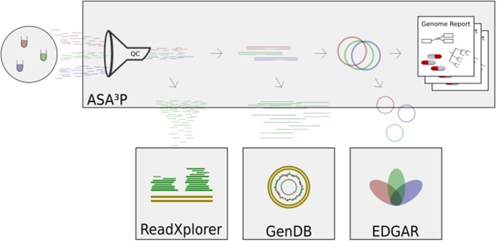 A review of bioinformatics platforms for comparative genomics diagram illustrating the role of various software tools developed by the bigi ccuart Choice Image