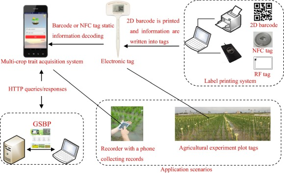 A crop trait information acquisition system with multitag
