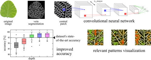 Deep Learning Models For Plant Disease Detection And Diagnosis