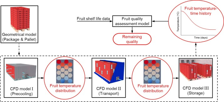 Virtual cold chain method to model the postharvest temperature