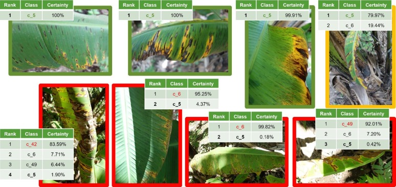Deep learning models for plant disease detection and