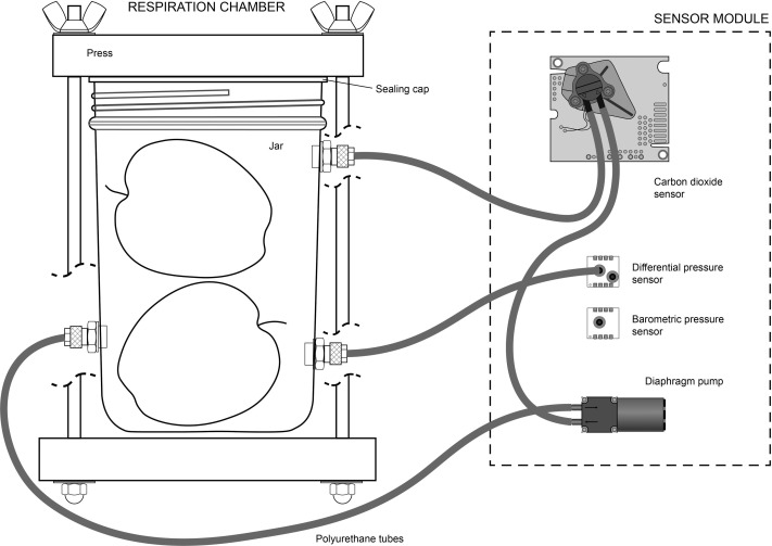 An Arduino-based low cost device for the measurement of the