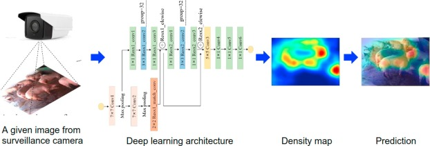 Automated pig counting using deep learning - ScienceDirect