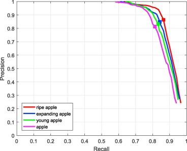 Apple detection during different growth stages in orchards using the