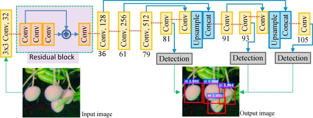 Deep learning – Method overview and review of use for fruit