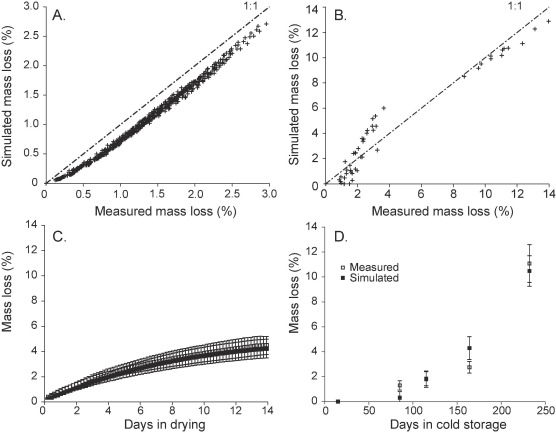 Analyzing quality and modelling mass loss of onions during
