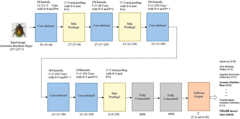 Crop pest classification based on deep convolutional neural