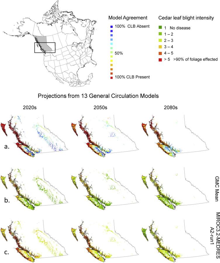 Predicting the risk of cedar leaf blight (Didymascella