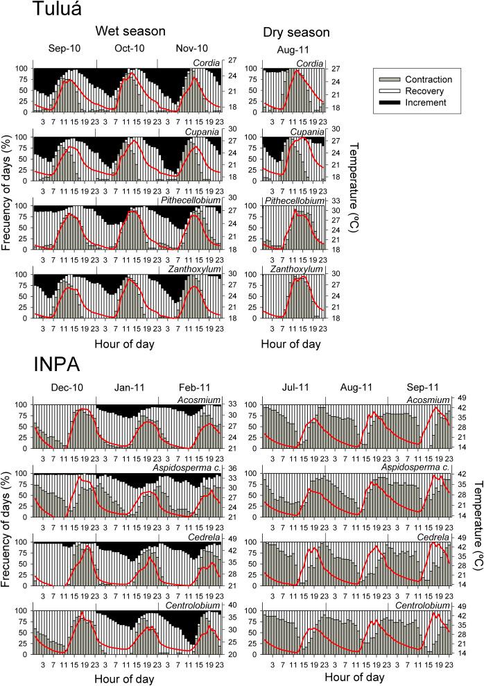 Climatic influences on leaf phenology, xylogenesis and