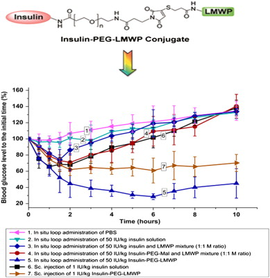 Low molecular weight protamine lmwp a nontoxic protamine download high res image 177kb ccuart Choice Image