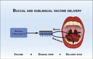 Immune tolerance inductive study