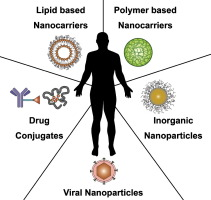 Nanomedicine in cancer therapy: Challenges, opportunities
