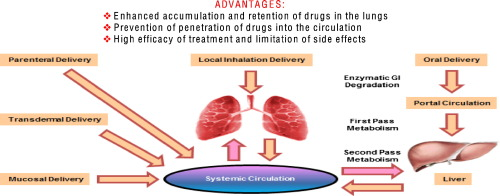 Nanotechnology approaches for inhalation treatment of lung diseases graphical abstract ccuart Choice Image