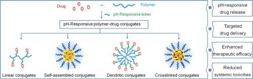 POLYMER DRUG CONJUGATES PDF DOWNLOAD