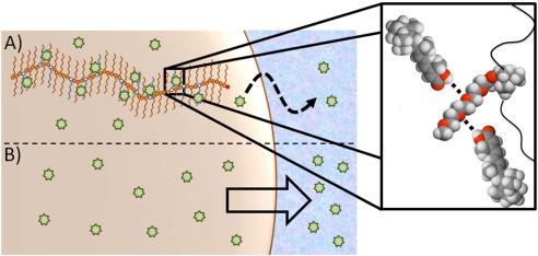 Controlling drug release from non-aqueous environments