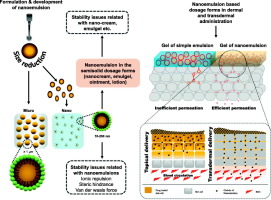 Nanoemulsion as pharmaceutical carrier for dermal and transdermal