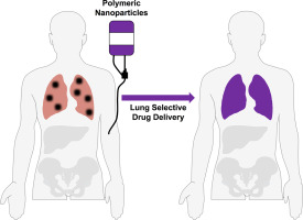 Colorectal Cancer Lung Metastasis Treatment With Polymer Drug Nanoparticles Sciencedirect
