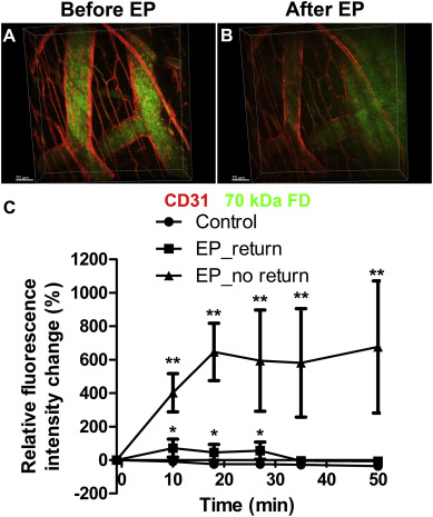 Increased permeability of blood vessels after reversible