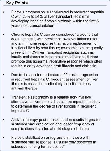 Progression of liver fibrosis in post-transplant hepatitis C